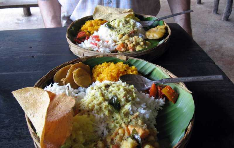 Dudhsagar-falls-spice-plantation-lunch,-goa