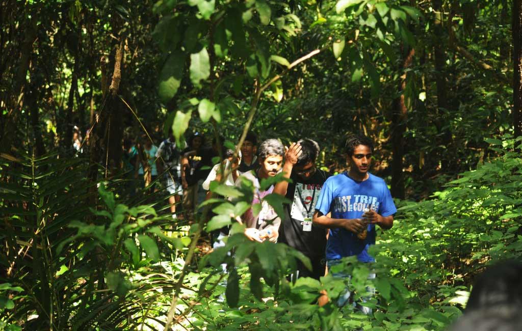 Trekking trip - Tambdi Surla Goa