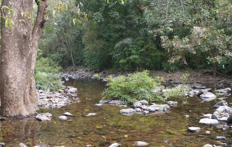 tambdi-surla-waterfall-trekking