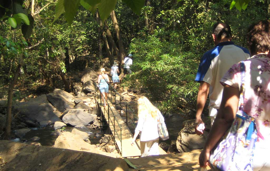 way-to-the-dudhsagar-falls