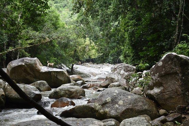 Dudhsagar-Falls-Goa-Monsoon